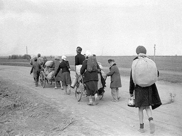 Война. Беженцы