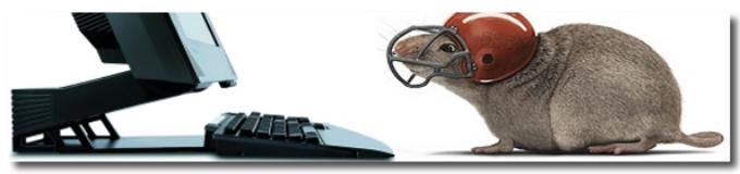 05 апреля 2018 — Уловка компьютерной крысы N 12